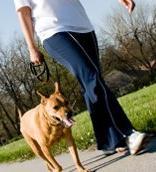 Girl walking a dog, public domain