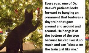 Cat and Christmas Tree wikimedia commons via ici_edu