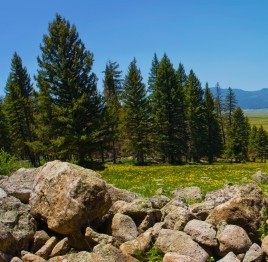 Valles Caldera NM photo by Thomas Shahan upload by Jacobo Werther Creative Commons