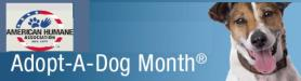 AHA Adopt Month